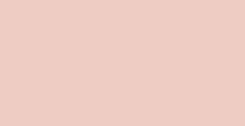 Spatolato_ErreLab_Cartella_Colore_104.01_rosa_antico_pallido