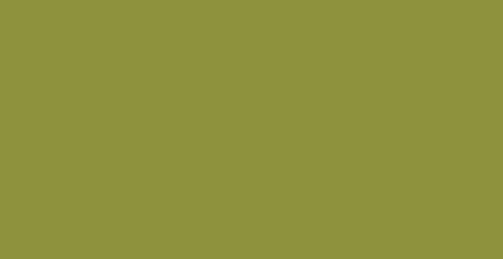 Spatolato_ErreLab_Cartella_Colore_330.05_verde_oliva