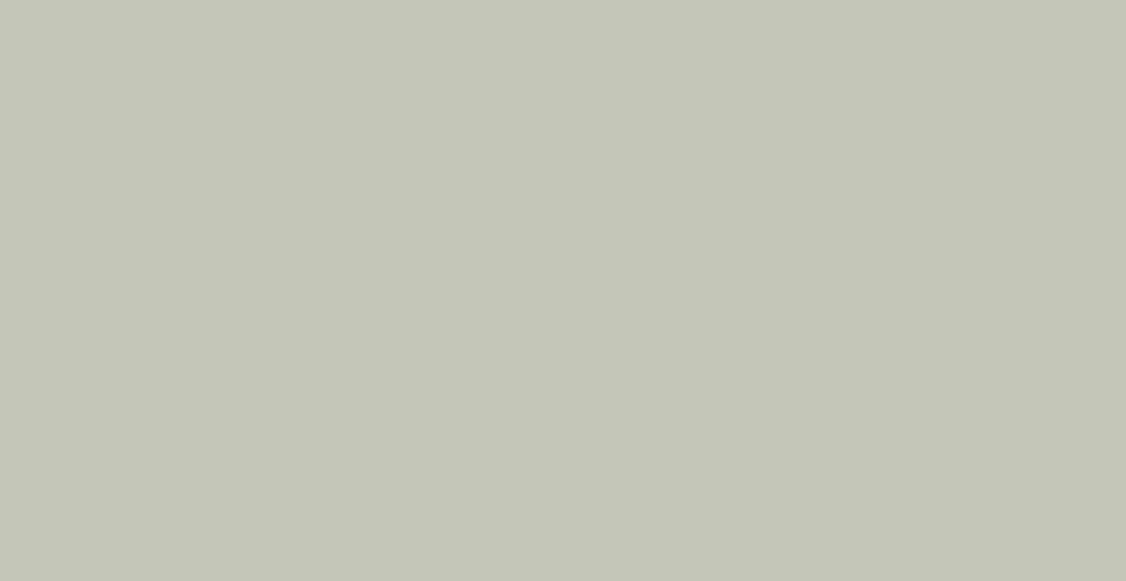 Spatolato_ErreLab_Cartella_Colore_590.03_grigio_oliva