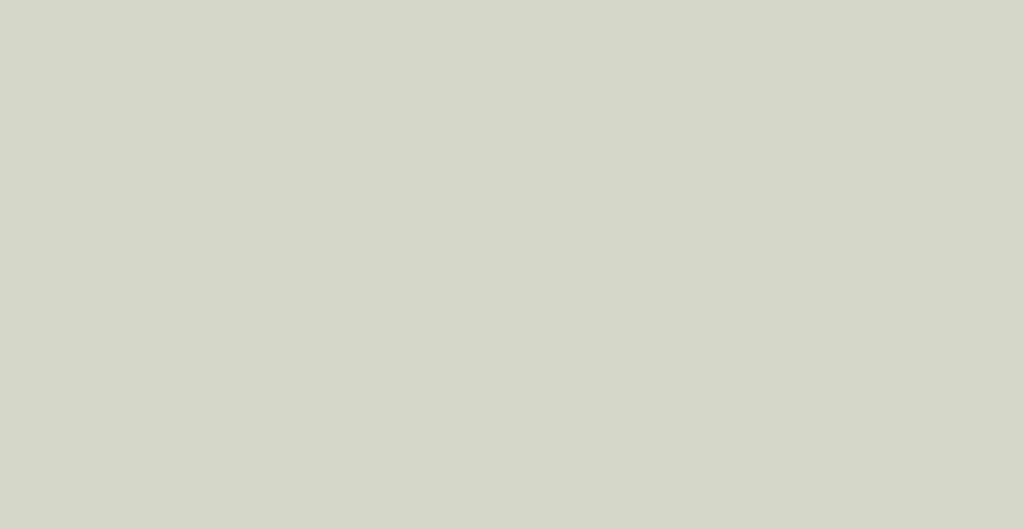 Spatolato_ErreLab_Cartella_Colore_592.01_verde_pino_grigio